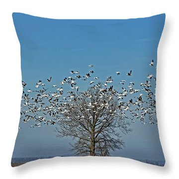Wild Geese IIi Throw Pillow by Debbie Portwood