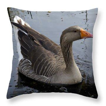 Wild Greylag Goose Throw Pillow by Lynn Palmer