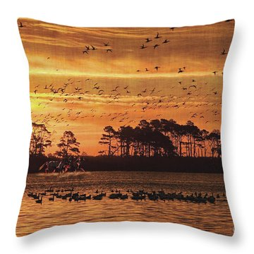 Wild Horses Throw Pillow by Lianne Schneider