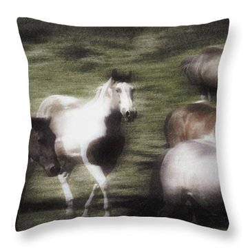 Wild Horses On The Move Throw Pillow by Don Hammond
