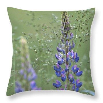 Wild Lupine Flower Throw Pillow