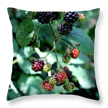 Throw Pillow featuring the photograph Wild Oregon Blackberries by Jo Sheehan