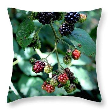 Wild Oregon Blackberries Throw Pillow by Jo Sheehan