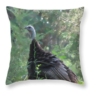 Throw Pillow featuring the digital art Wild Turkey 6380 3x4 by Maciek Froncisz