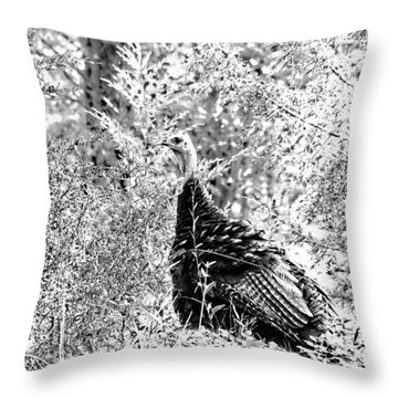 Throw Pillow featuring the photograph Wild Turkey In Black And White by Maciek Froncisz