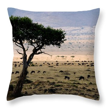 Wildebeest Connochaetes Taurinus Grazing Throw Pillow by Gregory G. Dimijian, M.D.