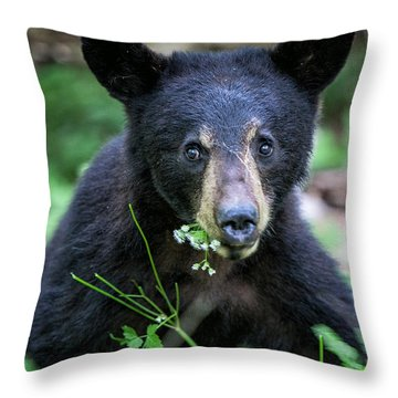 Wildflower Bear Throw Pillow by Ronald Lutz