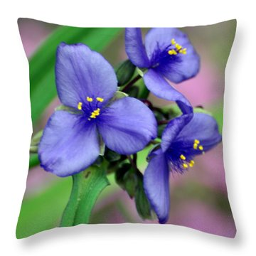 Wildflower Trilogy Throw Pillow by Marty Koch
