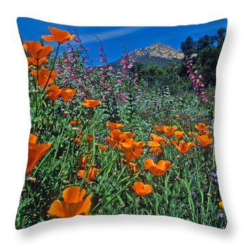 Wildflower Wonderland Throw Pillow by Kathy Yates