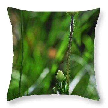 Throw Pillow featuring the photograph Wildflower1 by Fran Riley