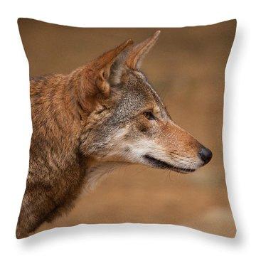 Wile E Coyote Throw Pillow by Karol Livote