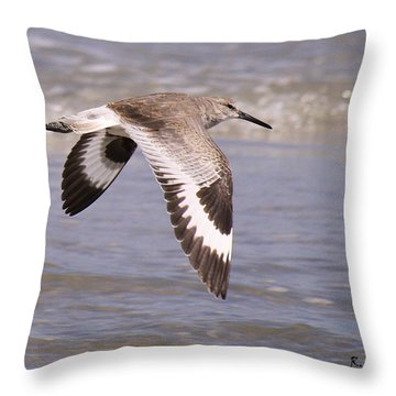 Willet In Flight Throw Pillow