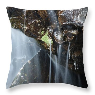 Willey Brook - White Mountains New Hampshire  Throw Pillow by Erin Paul Donovan