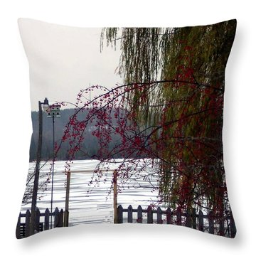 Willows And Berries In Winter Throw Pillow
