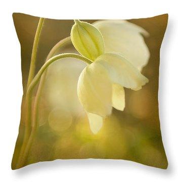 Wind Flowers In Evening Light Throw Pillow