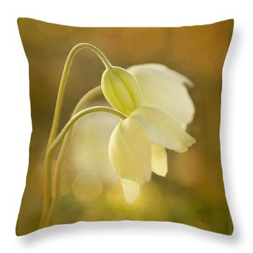 Wind Flowers In Evening Light Throw Pillow