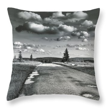 Throw Pillow featuring the photograph Winding Road by Mary Almond