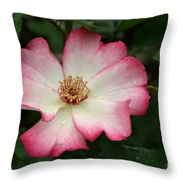 Throw Pillow featuring the photograph Windmill by Living Color Photography Lorraine Lynch