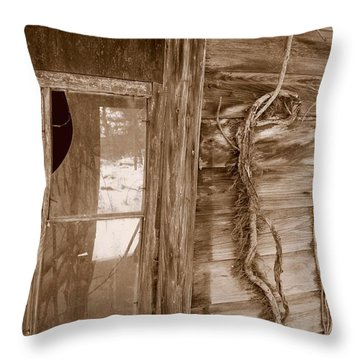Window And Vine Throw Pillow