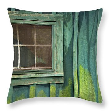 Window To The Past - D007898 Throw Pillow by Daniel Dempster