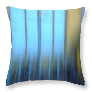 Windows And Walls Throw Pillow by Catherine Lau