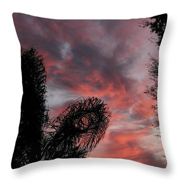 Windswept Clouds Throw Pillow