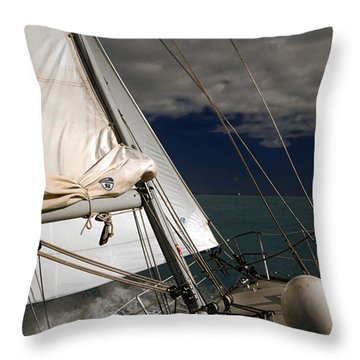 Windy Day Throw Pillow by Sally Weigand