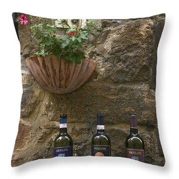 Wine A Bit Throw Pillow by Sally Weigand