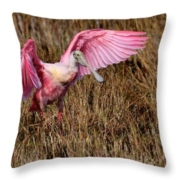 Wings Of Pink And Silk Throw Pillow