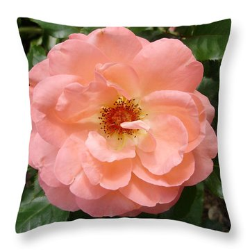 Wink Wink Throw Pillow by Emerald GreenForest
