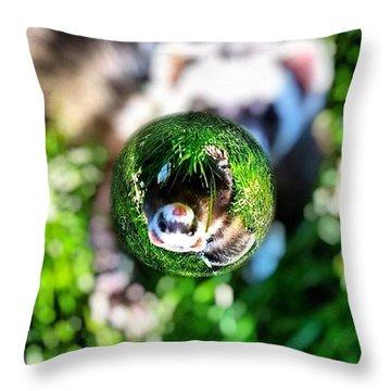 Winnie - A Ferret In A Marble Throw Pillow