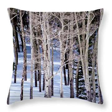 Throw Pillow featuring the photograph Winter Aspens by Colleen Coccia
