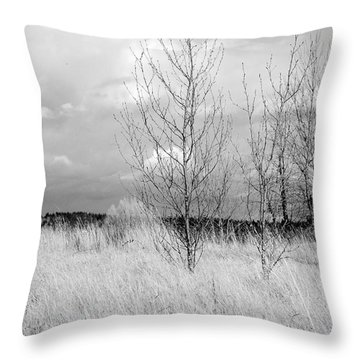 Winter Bare Throw Pillow by Kathleen Grace