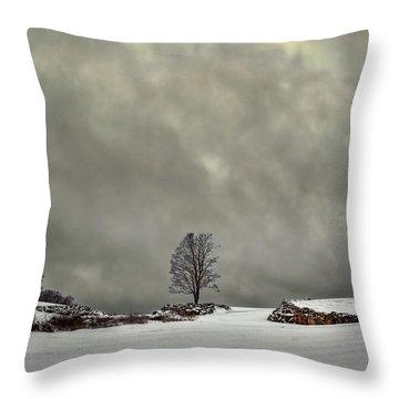 Winter Blues Throw Pillow by Evelina Kremsdorf