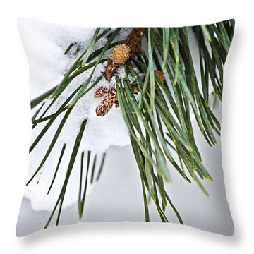 Winter Branches Throw Pillow by Elena Elisseeva