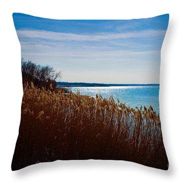Winter Breeze Throw Pillow by Lisa Holmgreen