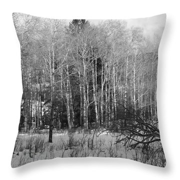 Winter Cold Throw Pillow by Paul Marto
