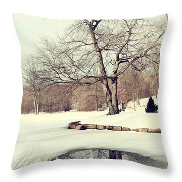 Winter Day In The Park Throw Pillow by Karol Livote