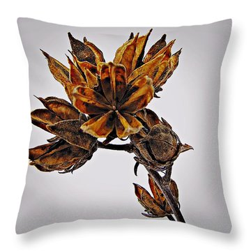 Winter Dormant Rose Of Sharon Throw Pillow
