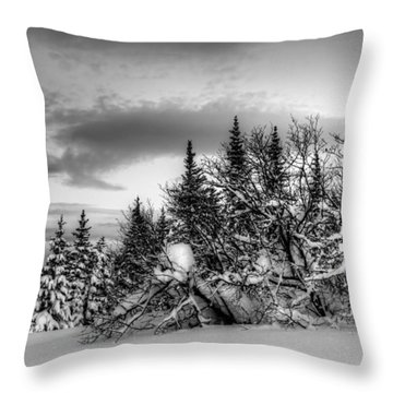Throw Pillow featuring the photograph Winter Evening by Michele Cornelius