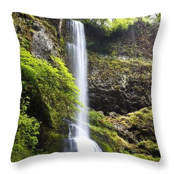 Winter Falls In Silver Falls State Park Throw Pillow