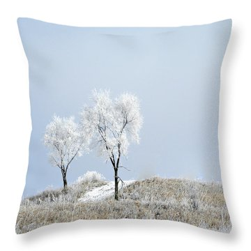 Winter Frost Throw Pillow by Julie Palencia