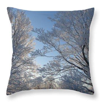 Winter Ice Throw Pillow