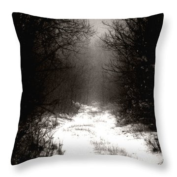 Winter IIi Throw Pillow by Mimulux patricia no No