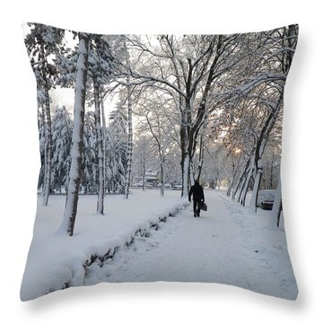 Throw Pillow featuring the photograph Winter In Mako by Anna Ruzsan