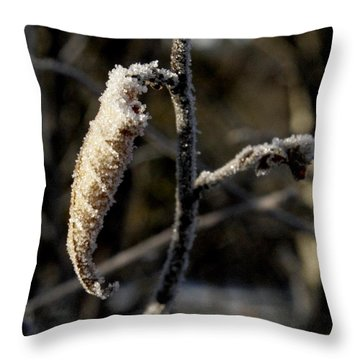 Winter Is Here Throw Pillow by Johnathan Evans