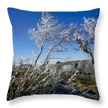 Winter Landscape.  Auvergne. France Throw Pillow by Bernard Jaubert