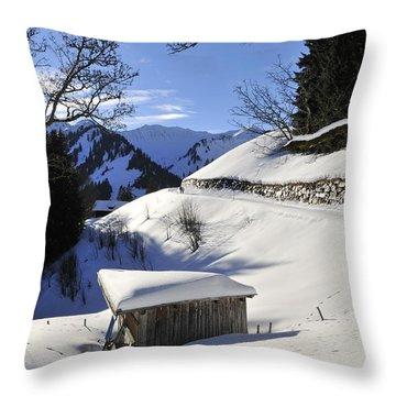 Winter Landscape Throw Pillow by Matthias Hauser
