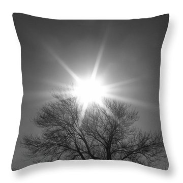 Winter Light Throw Pillow by Dorrene BrownButterfield