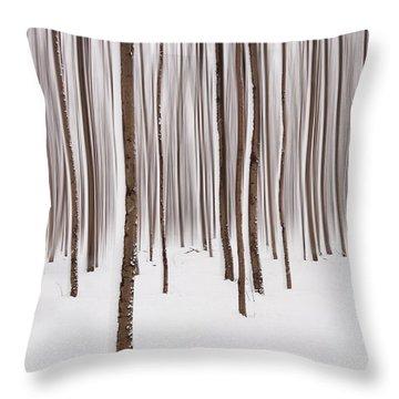 Winter Throw Pillow by Mircea Costina Photography
